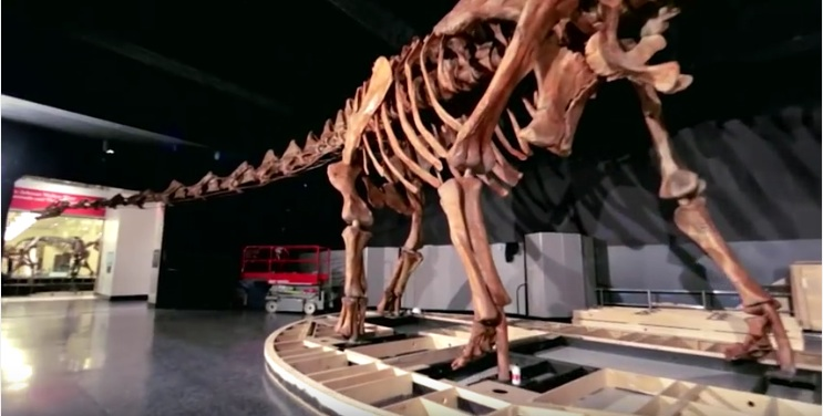 Meet the titanosaur,MPF World news,MPF,Mission Positive Films