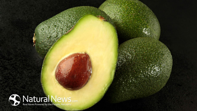 MPF Eye on Health - Save That Avocado Seed - An Article by Heidi Kristoffer, Avocado Seed, Mission Positive Films,MPF, MPF Eye on Health